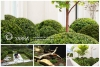 Image for Melbourne Landscaping Company -